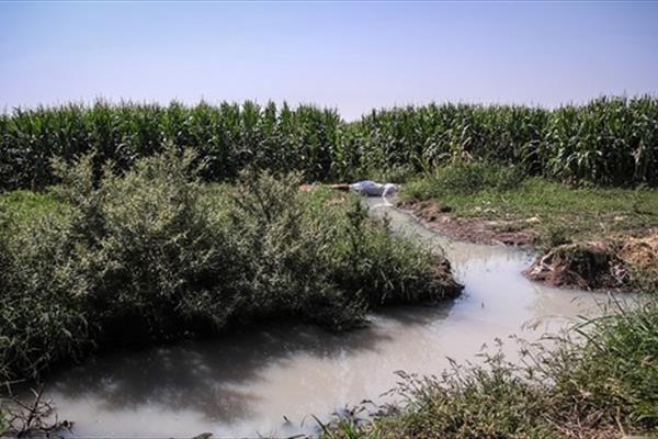 آبیاری زمین های کشاورزی حاشیه گرگان با فاضلاب