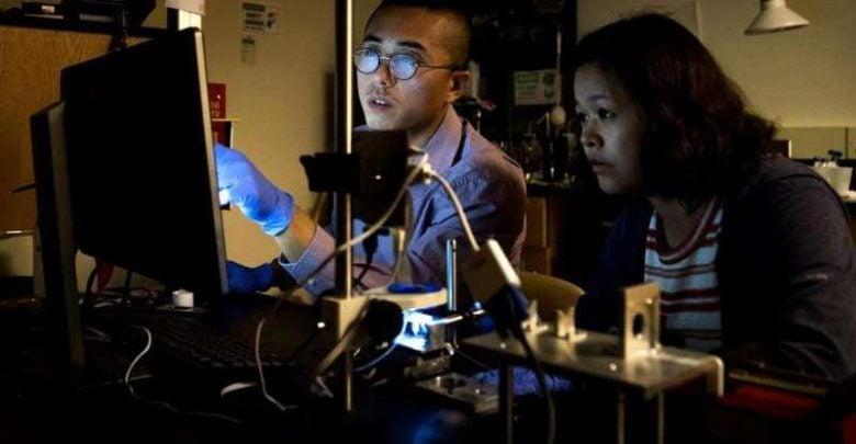 روشهای مهندسیشده نوین برای حل مشکل آبهای آلوده
