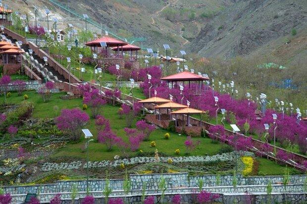 بوستان های جنگلی شمال تهران